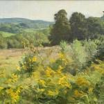 Hills and Goldenrod